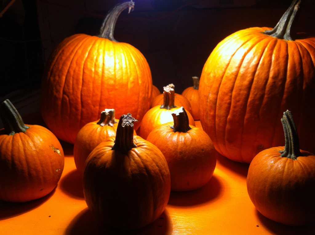 Pumpkins to hack